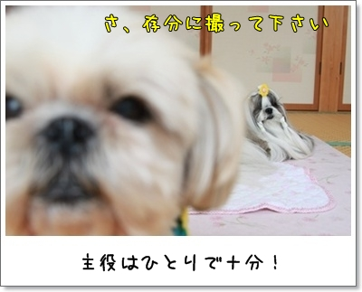 2010_0613_152821AA.jpg