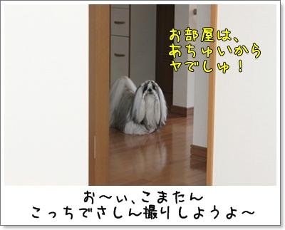 2010_0619_174902AA.jpg