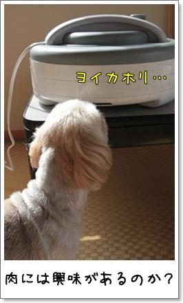 2010_0620_075255AA.jpg