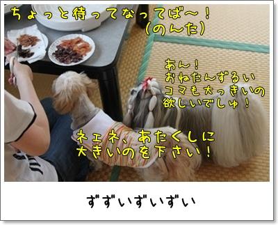 2010_0620_130125AA.jpg