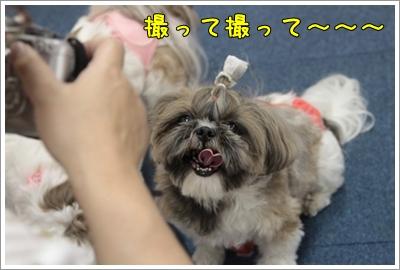 2010_0702_135043AA.jpg