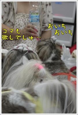 2010_0702_135432AA.jpg