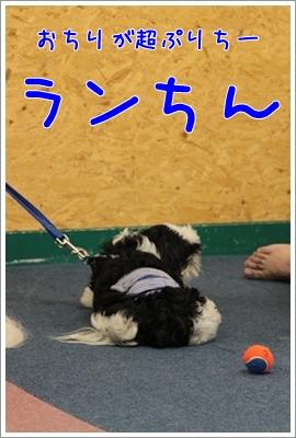 2010_0702_140745AA.jpg
