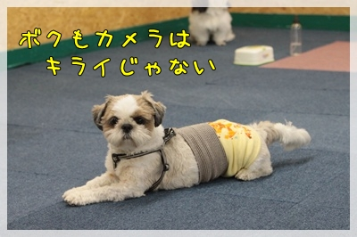 2010_0702_142727AA.jpg
