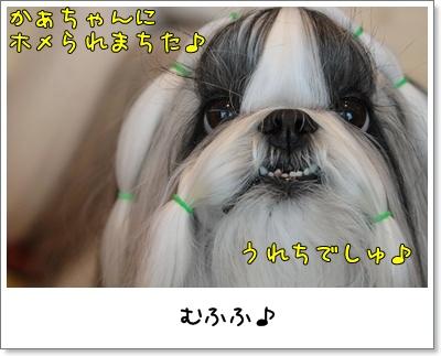 2010_0706_074507AA.jpg