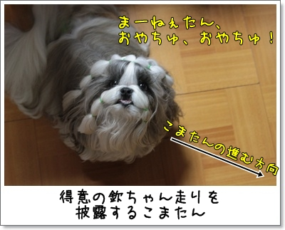 2010_0706_195842AA.jpg