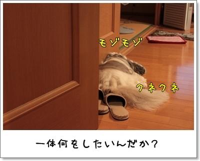 2010_0706_234807AA.jpg