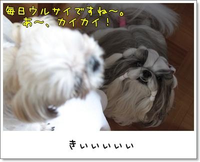 2010_0707_195236AA.jpg