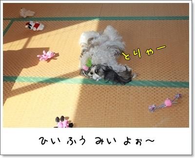 2010_0710_075057AA.jpg