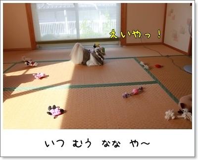 2010_0710_075318AA.jpg