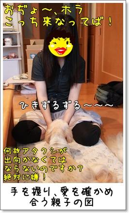 2010_0710_183531AA.jpg