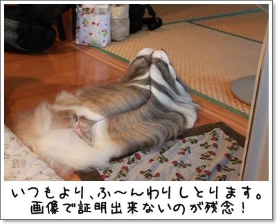 2010_0710_183539AA.jpg