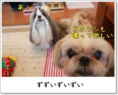 2010_0711_155447AA.jpg