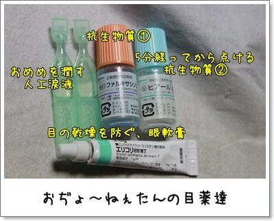 2010_0713_194809AA.jpg