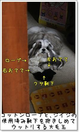 2010_0715_194612AA.jpg
