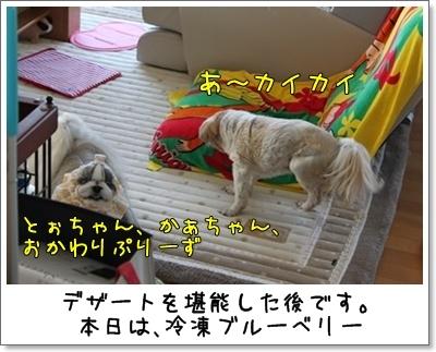 2010_0718_083109AA.jpg