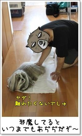2010_0718_083536AA.jpg