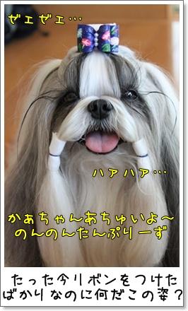 2010_0718_120524AA.jpg