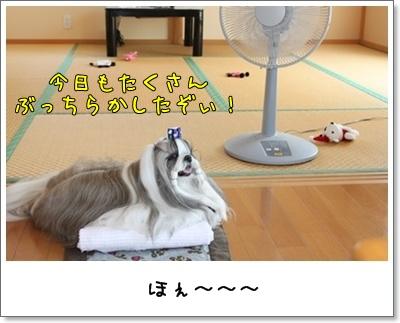 2010_0718_120822AA.jpg