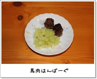 2010_0726_204809AA.jpg
