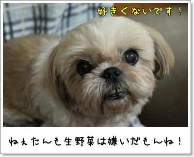 2010_0729_191345AA.jpg
