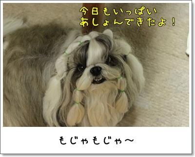 2010_0729_191350AA.jpg
