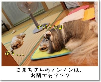 2010_0731_193745AA.jpg
