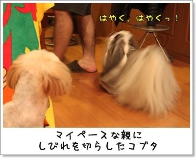 2010_0813_213228AA.jpg