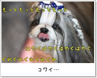 2010_0816_130905AA.jpg