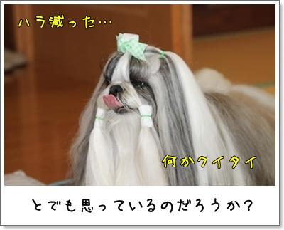 2010_0822_125110AA.jpg