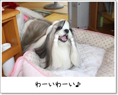 2010_0826_074021AA.jpg