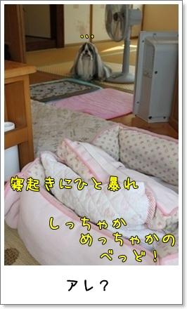 2010_0902_074534AA.jpg
