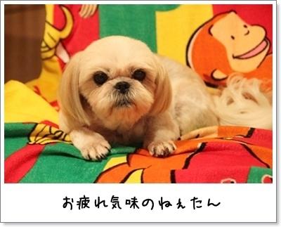 2010_0911_200901AA.jpg