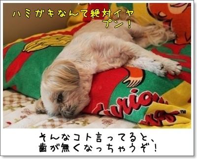 2010_0912_134222AA.jpg