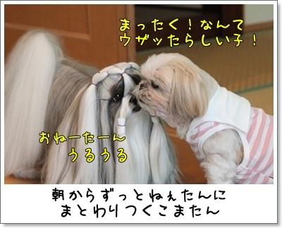 2010_0916_081919AA.jpg