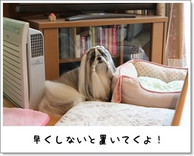 2010_0916_081954AA.jpg