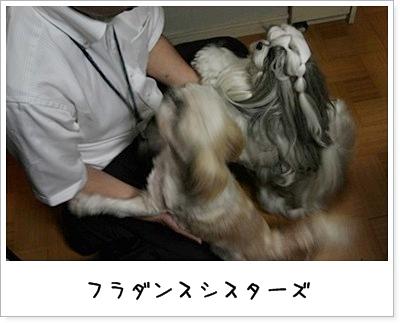 2010_0917_201019AA.jpg