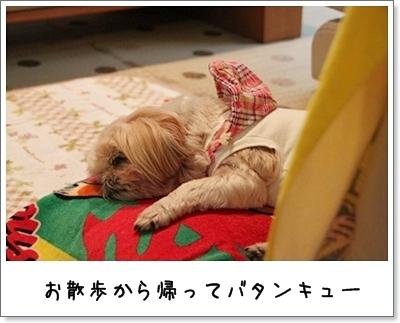 2010_0920_083854AA.jpg