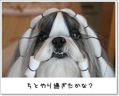2010_0924_074805AA.jpg