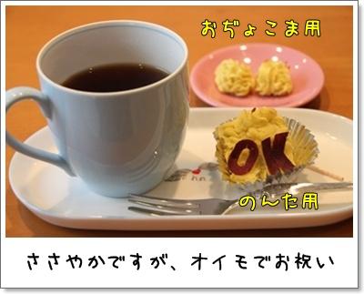 2010_0926_162338AA.jpg