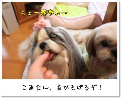 2010_0926_162657AA.jpg