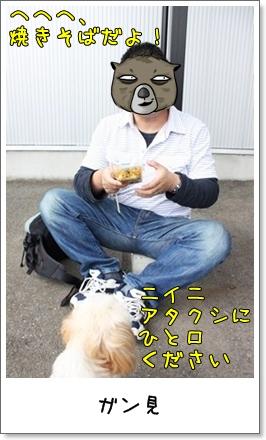 2010_1003_133056AA.jpg