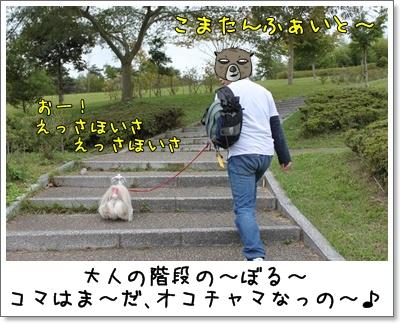 2010_1003_151933AB.jpg