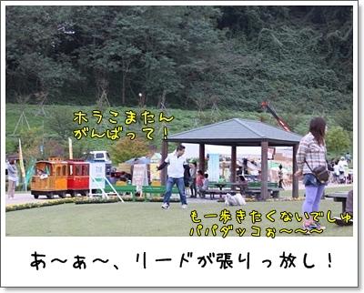 2010_1003_155619AA.jpg