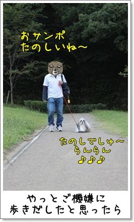 2010_1003_155928AB.jpg