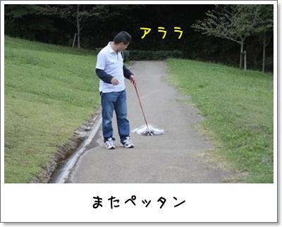 2010_1003_155954AA.jpg
