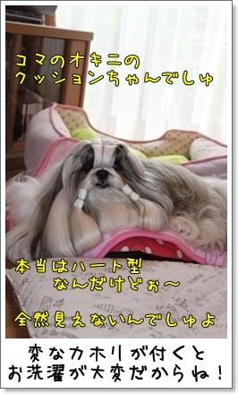 2010_1005_074548AA.jpg