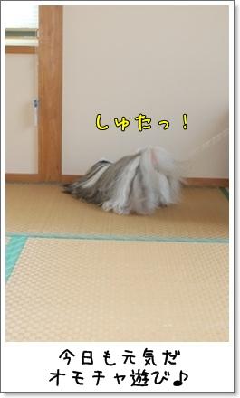 2010_1007_074848AA.jpg