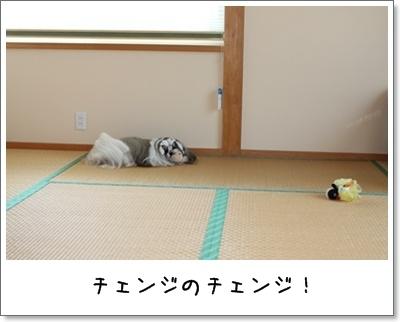 2010_1007_074930AA.jpg