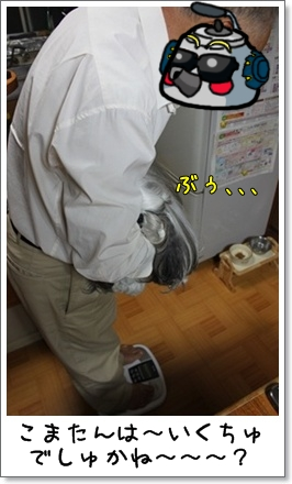 2010_1013_200512AA.jpg